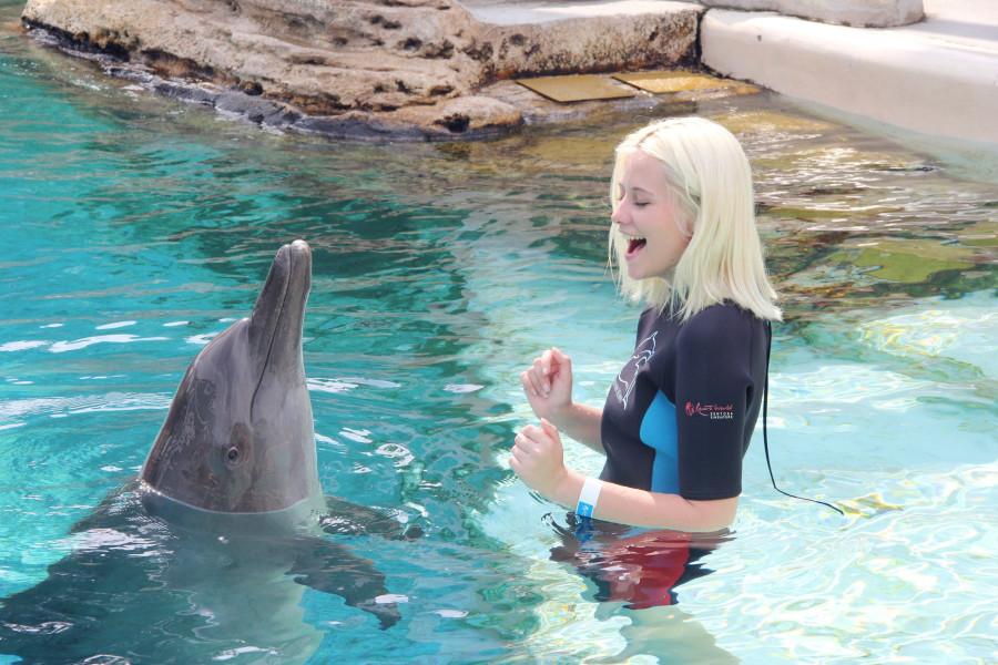 Секс дельфина с девушкой в басейне фото 671-291