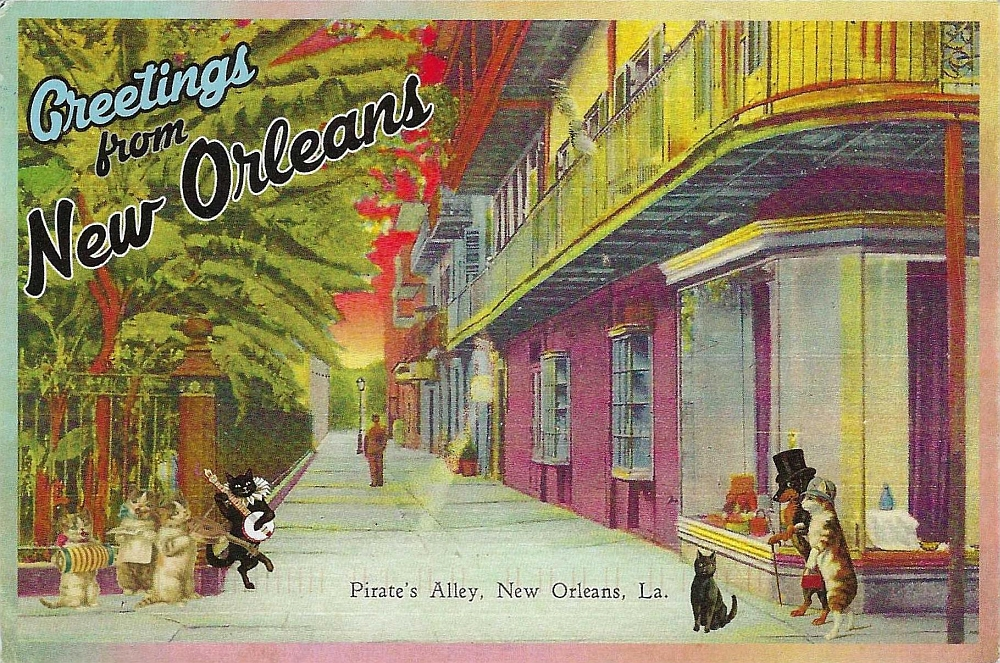 NOLA with cats