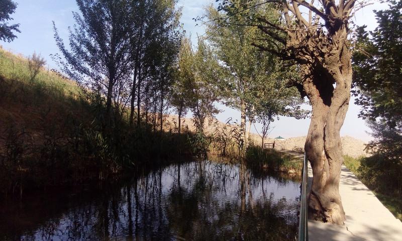 Озерцо с родниковой водой.