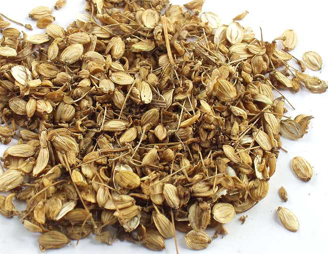 Пастернак посевной(Pastinaca sativa) плоды