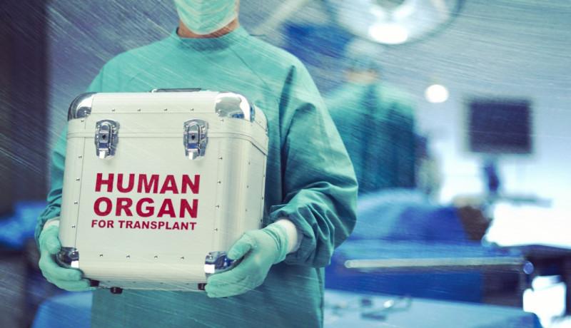 РЕН ТВ вышел на международную сеть черных трансплантологов
