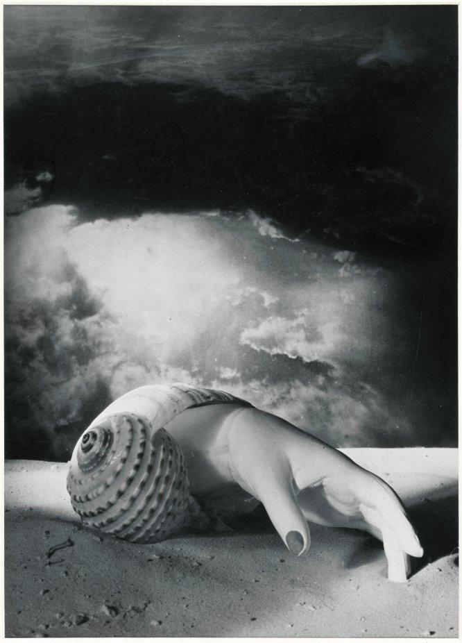 Не Дали единым Dora Maar - Mano saliendo de una concha, 1934.jpg