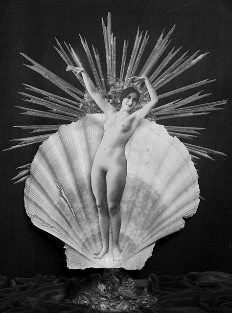 Paper Collage & shell, 2011.  Colette Saint Yves.jpg