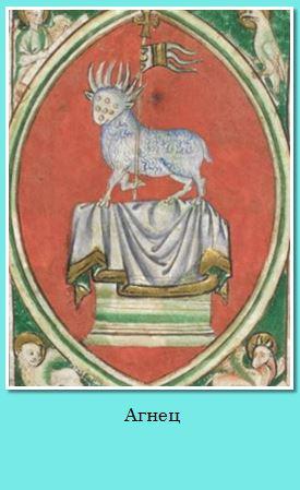 05. Lamb.JPG