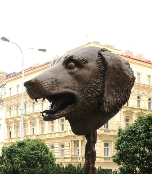 Aj_Wej-wej_Zvěrokruh_Dog_Praha_2016_1.jpg