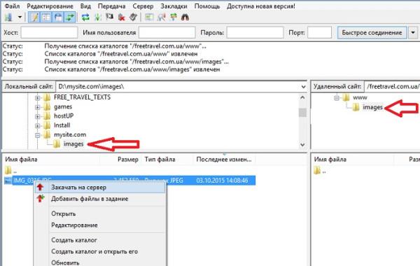 Загрузить сайт на хостинг через FileZilla