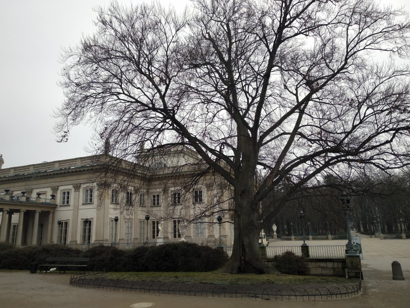Королевские Лазенки: дворец на острове