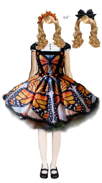 butterflycoord3