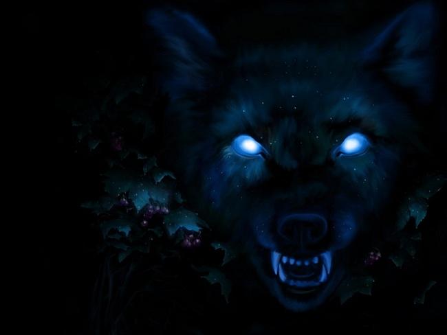 Картинки аниме белого волка