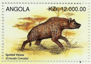 Spotted-Hyena-Crocuta-crocuta.jpg