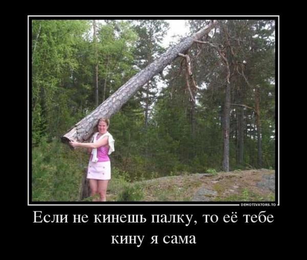 179659_esli-ne-kinesh-palku-to-eyo-tebe-kinu-ya-sama_demotivators_ru
