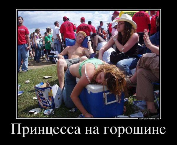 612524_printsessa-na-goroshine_demotivators_ru