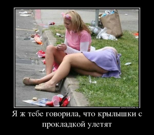10145055_ya-zh-tebe-govorila-chto-kryilyishki-s-prokladkoj-uletyat