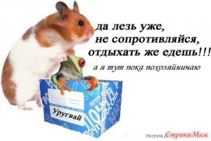 16663798_75589thumb500.jpg