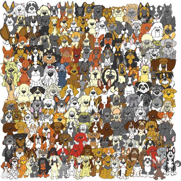 Найди панду!