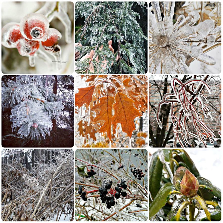 Ледяной дождь 11.11.16