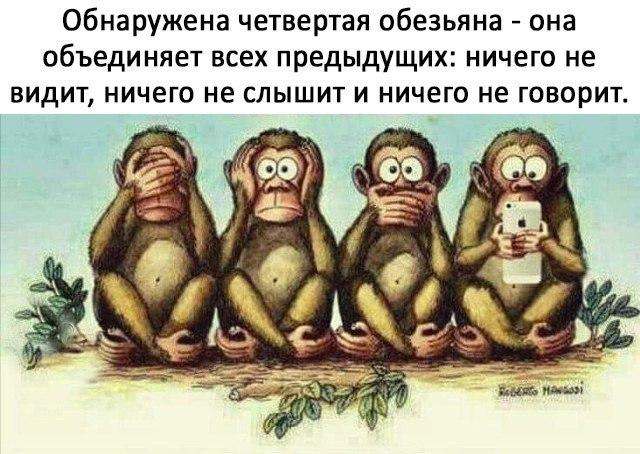 Четвёртая обезьяна