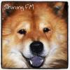 Shining FM