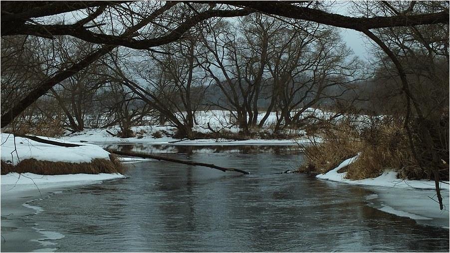 River Protva_SKI_5_20150118