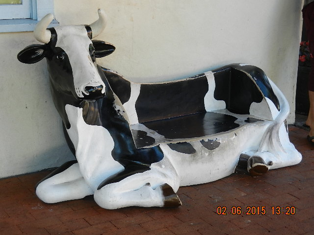 Cow Seat