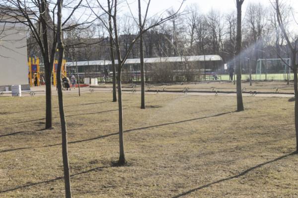 Один солнечный весенний день в Петербурге DSC_5919
