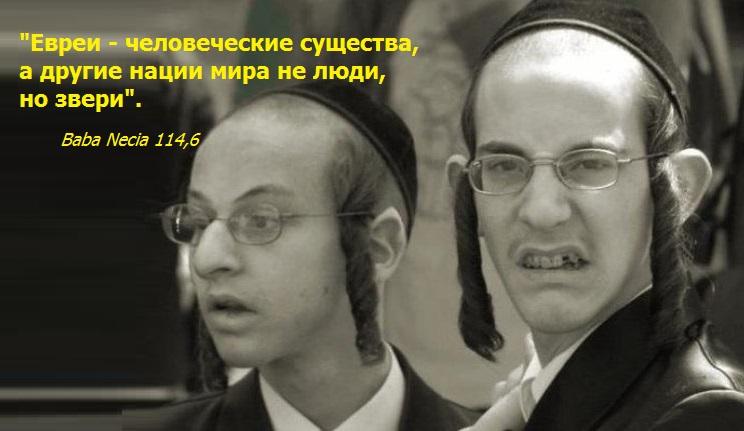 Евреи вырождение культура гомосексуализм