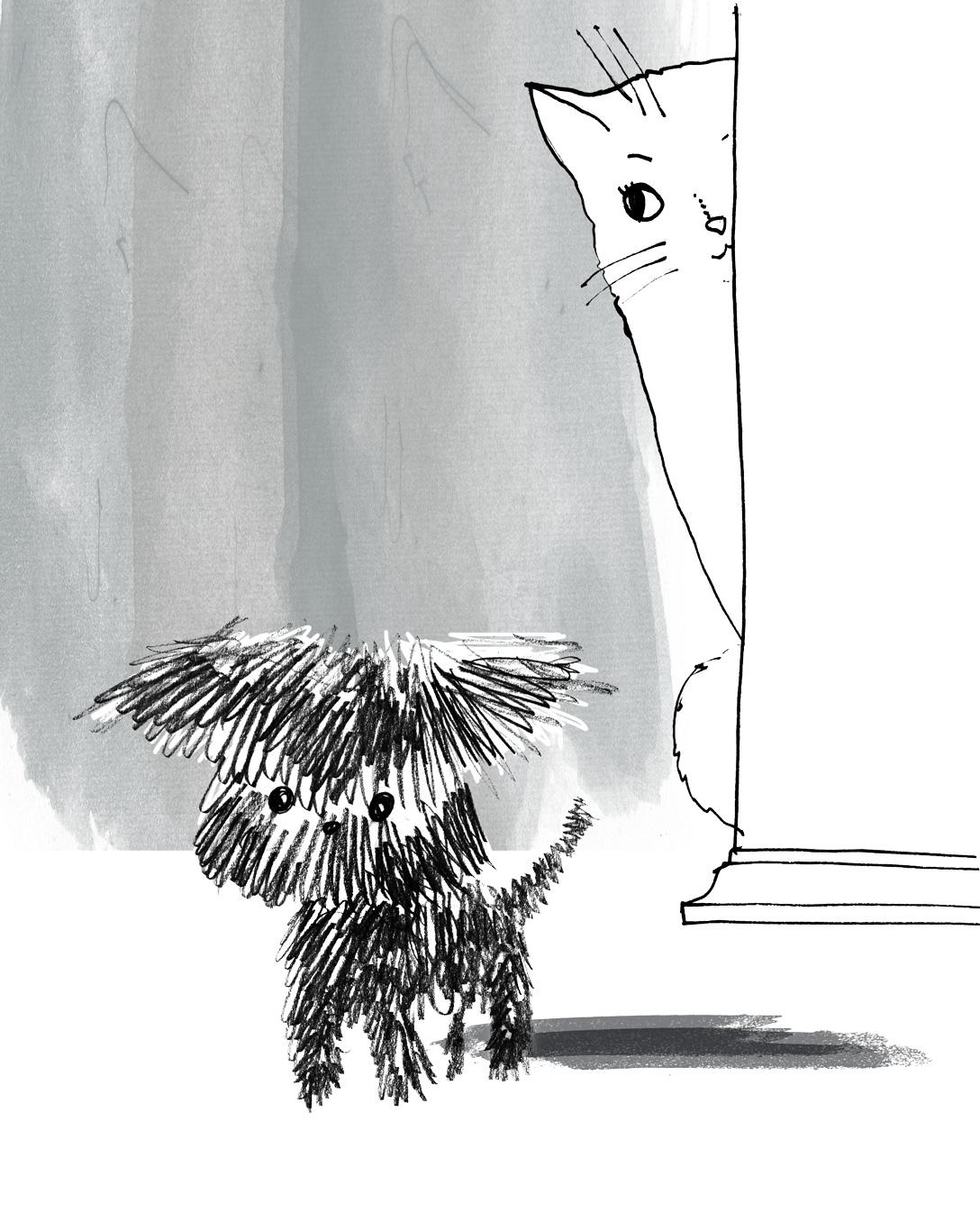 Cat&-Dog