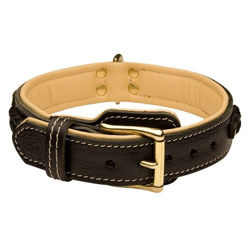 exclusive-leather-dog-collar-c43-3
