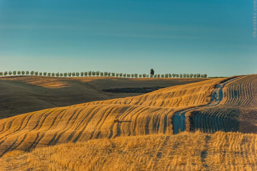 Tuscany view. Photographer: Konstantin Kalishko, www.kalishko.com