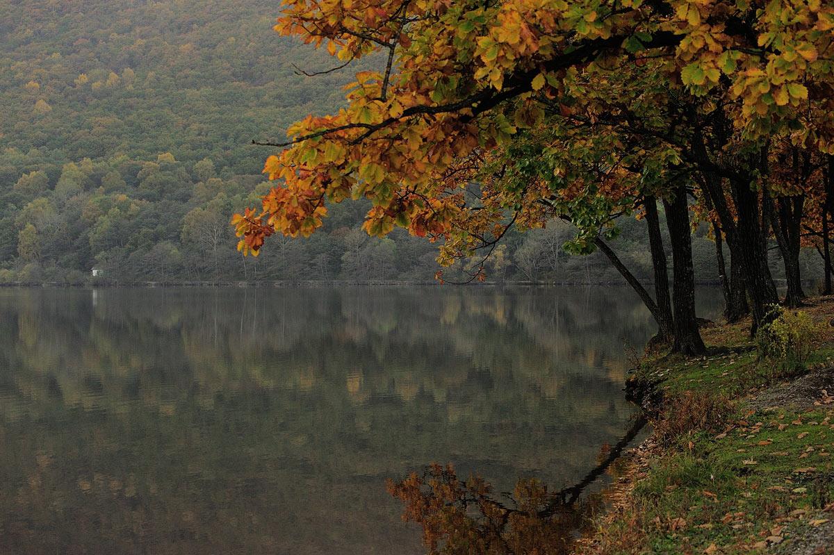 http://ic.pics.livejournal.com/shpatak/20500671/670073/670073_original.jpg