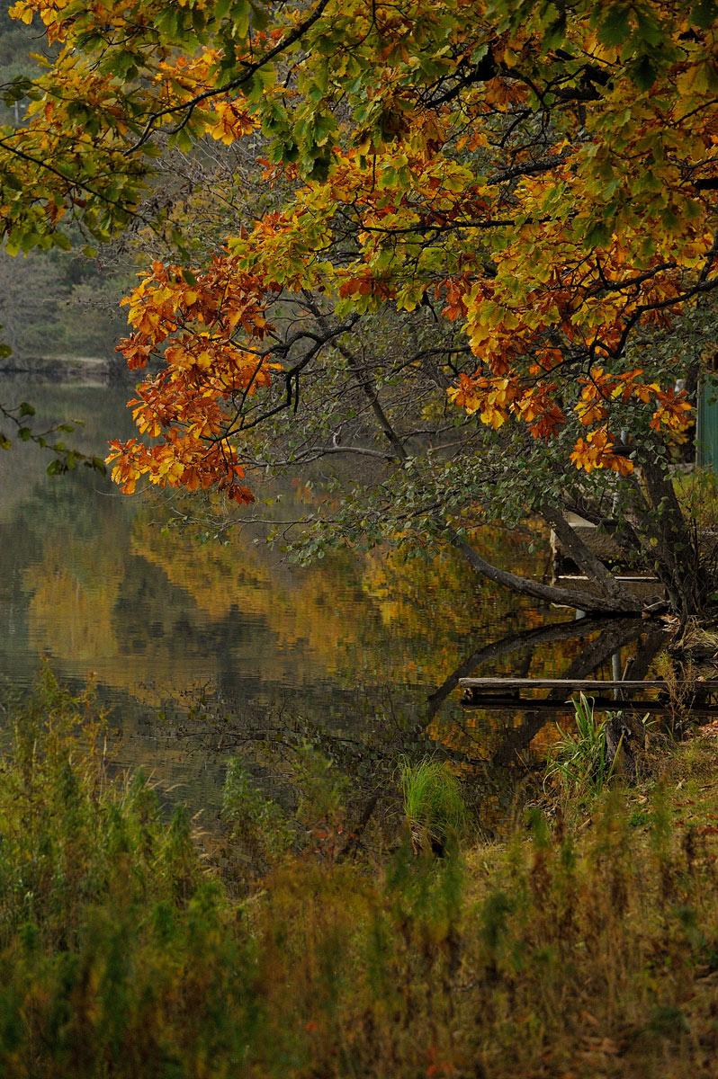http://ic.pics.livejournal.com/shpatak/20500671/670880/670880_original.jpg