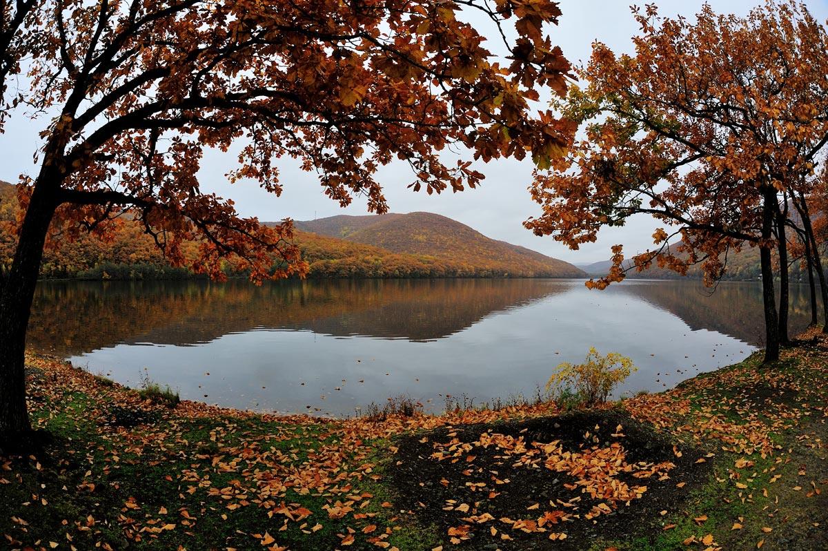 http://ic.pics.livejournal.com/shpatak/20500671/674374/674374_original.jpg