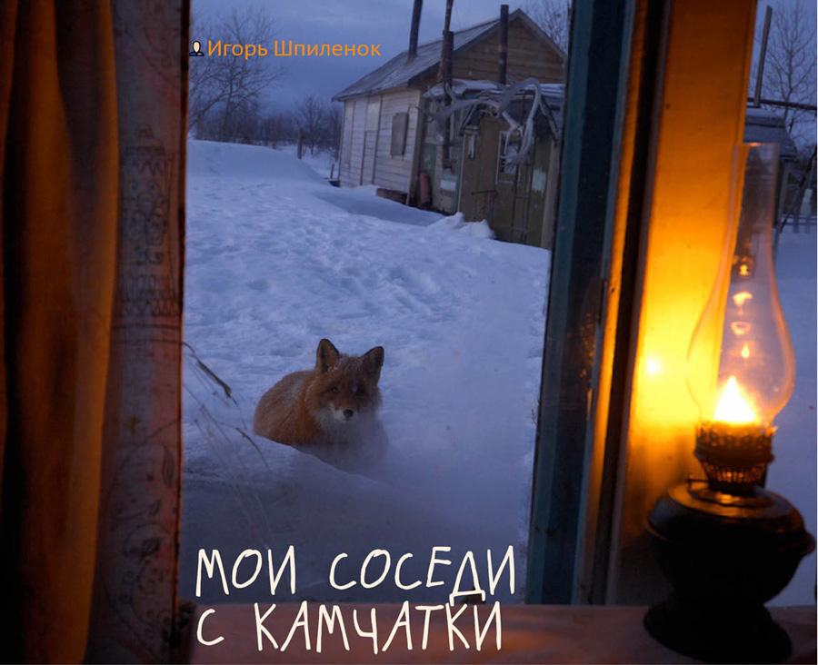 COVER-SHPILENOK-55
