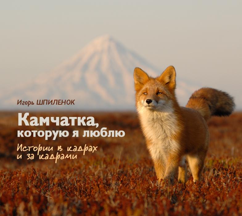 Shpilenok_cover_2