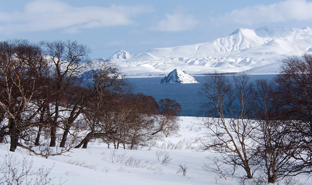 Остров сердце алаида