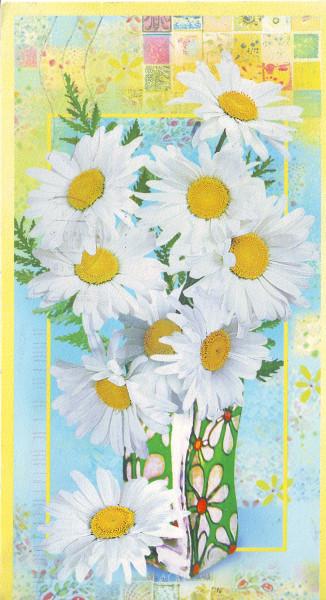 card329-1