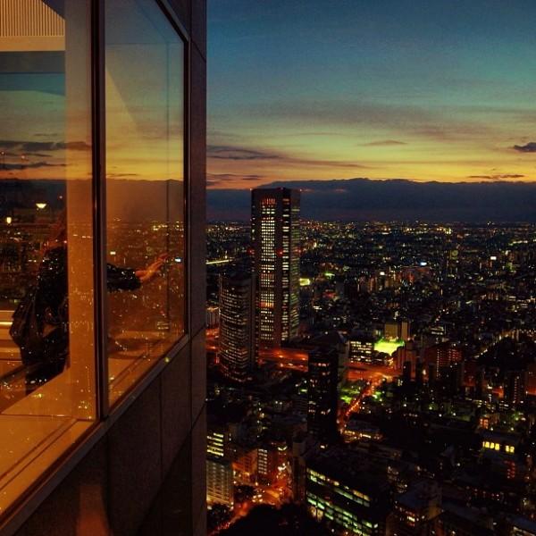 картинка мегаполис из окна море выйти