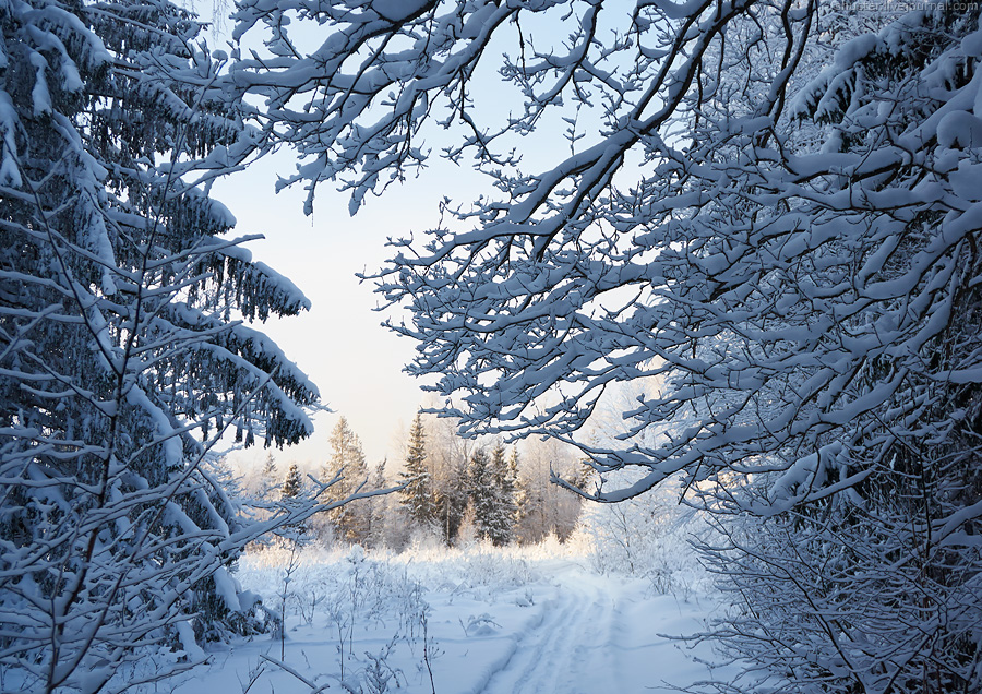 01 ZG-snow-05-23-01-2016-sm
