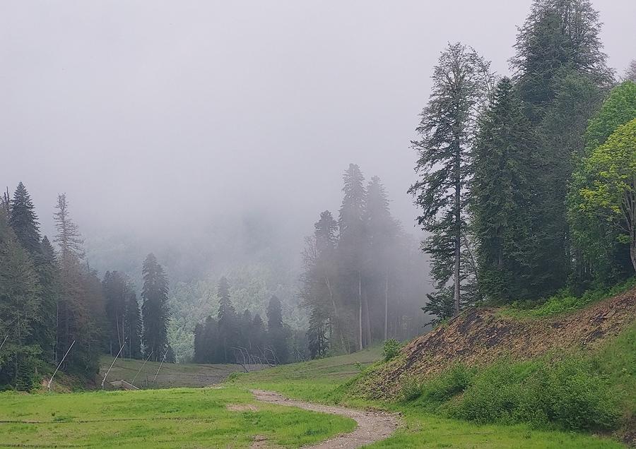 Krasnaya-Polyana-Бзерпи-2021-06-24-02a-sm