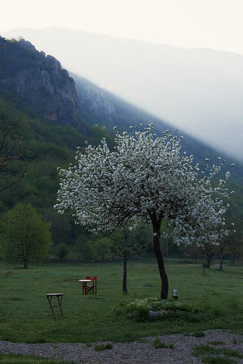 Montenegro-58-020512-sm