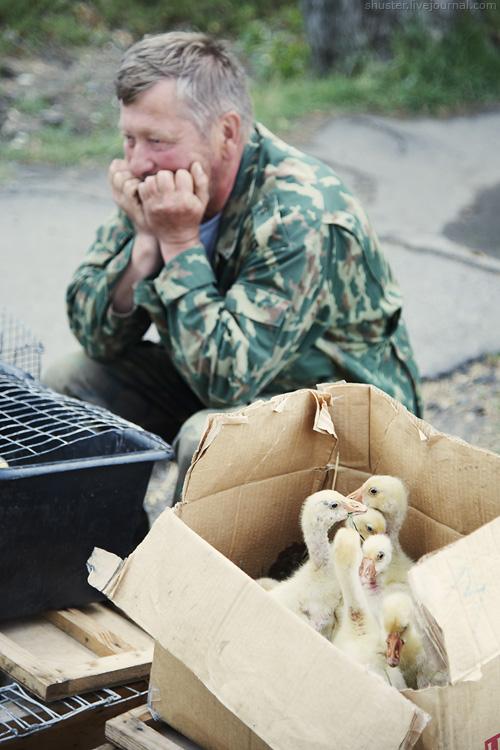 Rostov-17-14072012-sm