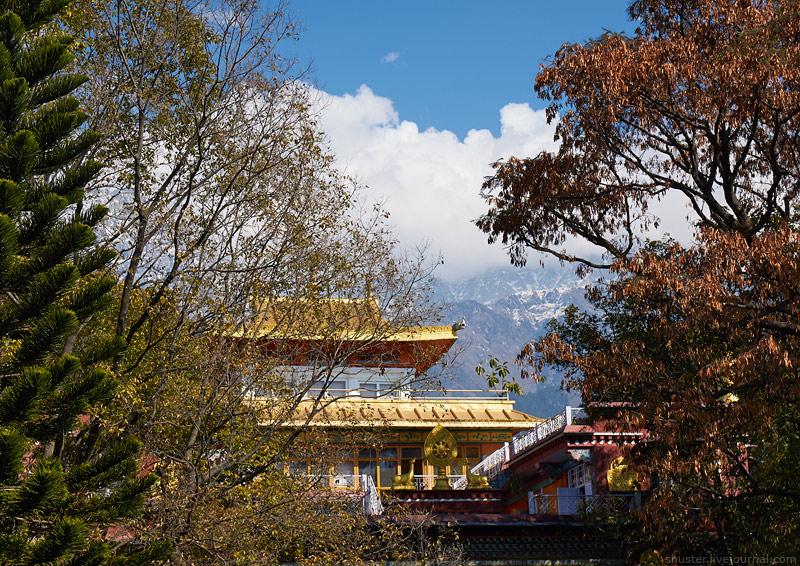 India-Dharamsala-06-28122013-sm