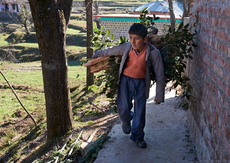 India-Dharamsala-11-29122013-sm
