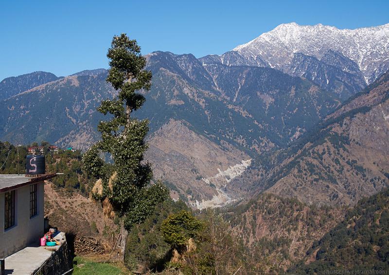 India-Dharamsala-12-29122013-sm