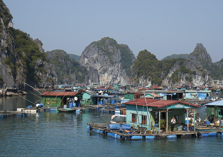 1 Vietnam-CatBa-16-01012015-sm