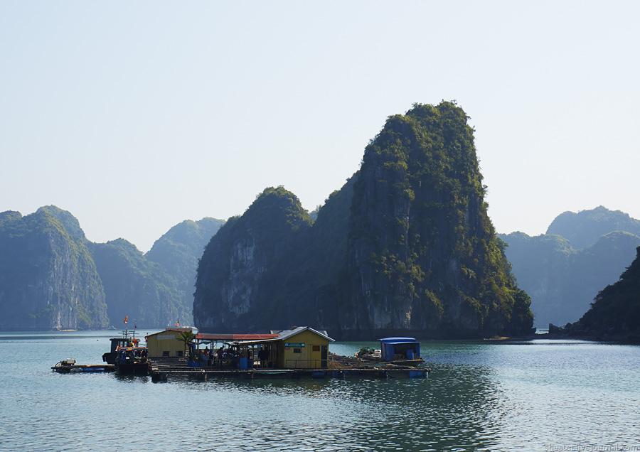 Vietnam-CatBa-38-01012015-sm
