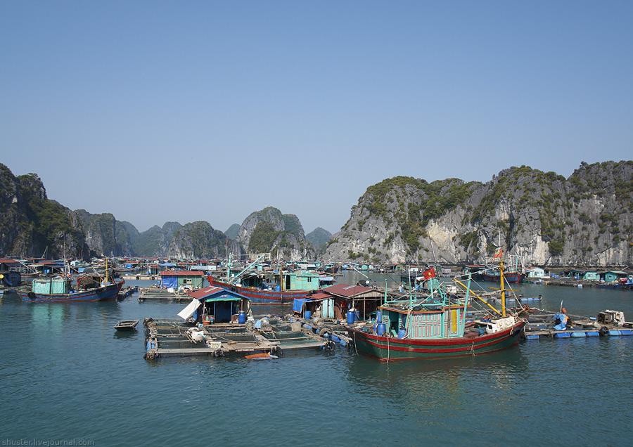 Vietnam-CatBa-17-01012015-sm