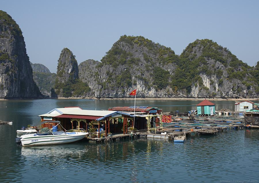 Vietnam-CatBa-19-01012015-sm