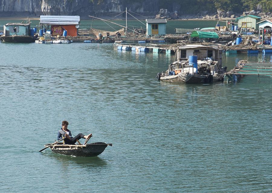 Vietnam-CatBa-21-01012015-sm
