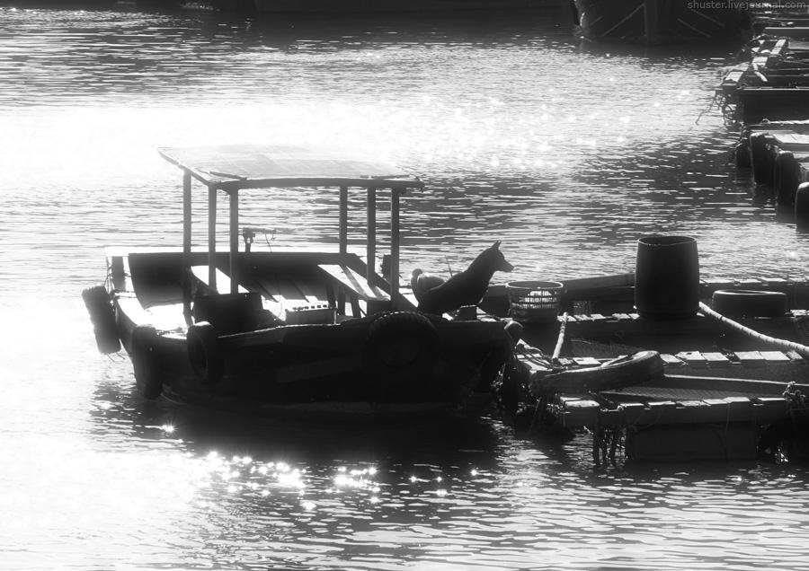 Vietnam-CatBa-22-01012015-sm